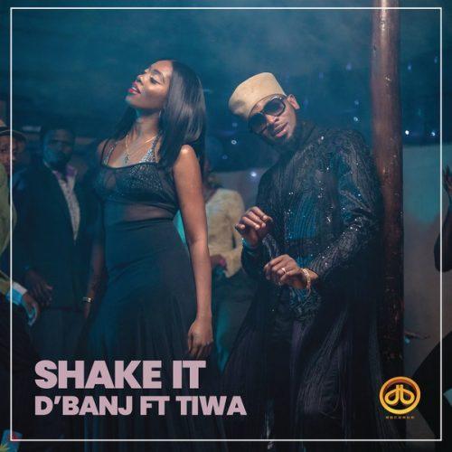 DBanj Shake It